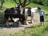 mai2008radtour037.jpg
